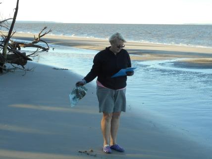 Georgia Sea Turtle Center Beach Clean-Up