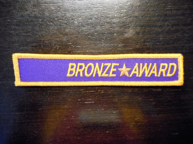 The Jekyll island Lions Club earned a Bronze Award from the Georgia Lions Camp.